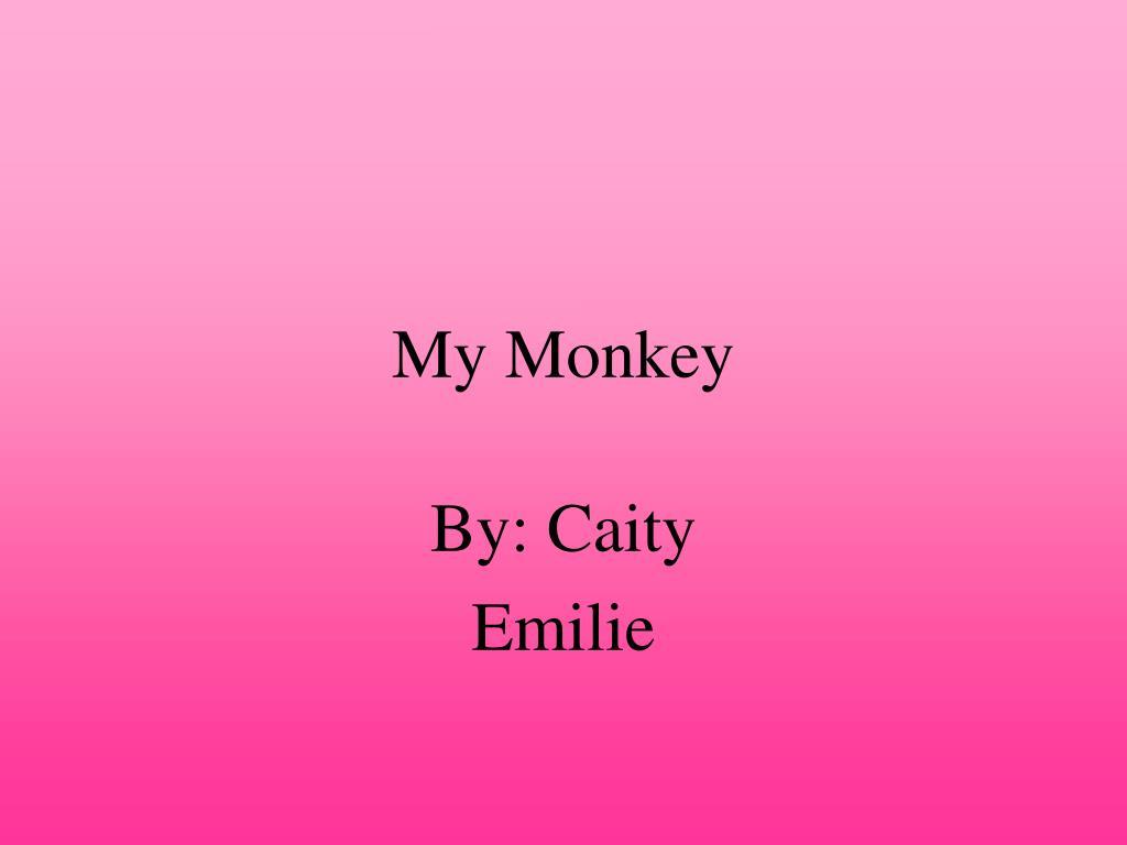 my monkey l.