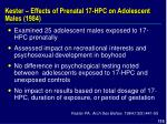 kester effects of prenatal 17 hpc on adolescent males 1984