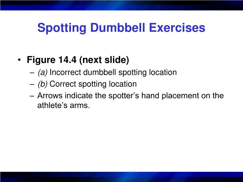 Spotting Dumbbell Exercises