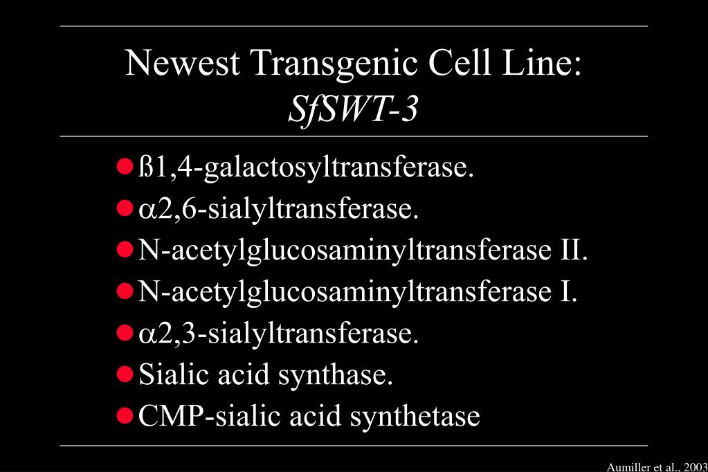 Newest Transgenic Cell Line: