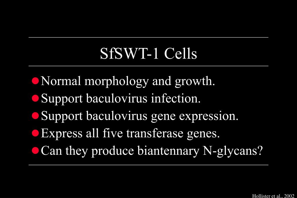 SfSWT-1 Cells