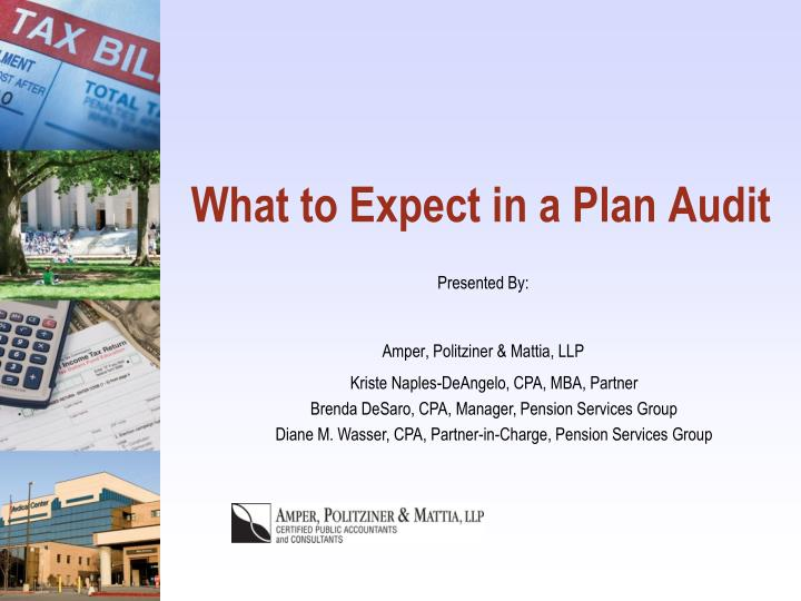 What to expect in a plan audit