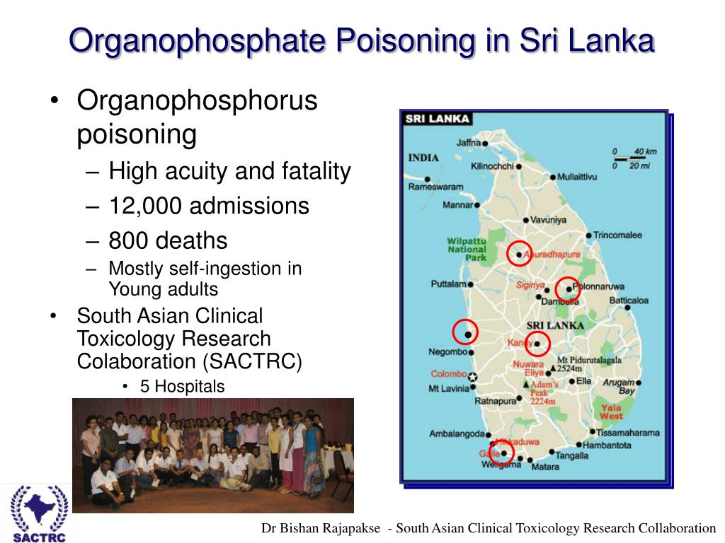 organophosphate pesticides Examples: chlorpyrifos (dursban), methyl parathion known health effects: neurotoxic vomiting, diarrhea, abdominal cramps, dizziness, eye pain, blurred vision, confusion, numbness, twitching, paralysis, death.