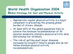 world health organisation 2004 g lobal strategy for diet and physical activity