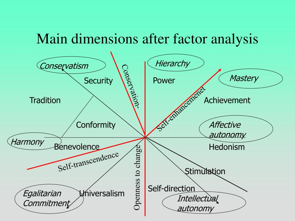 Main dimensions after factor analysis