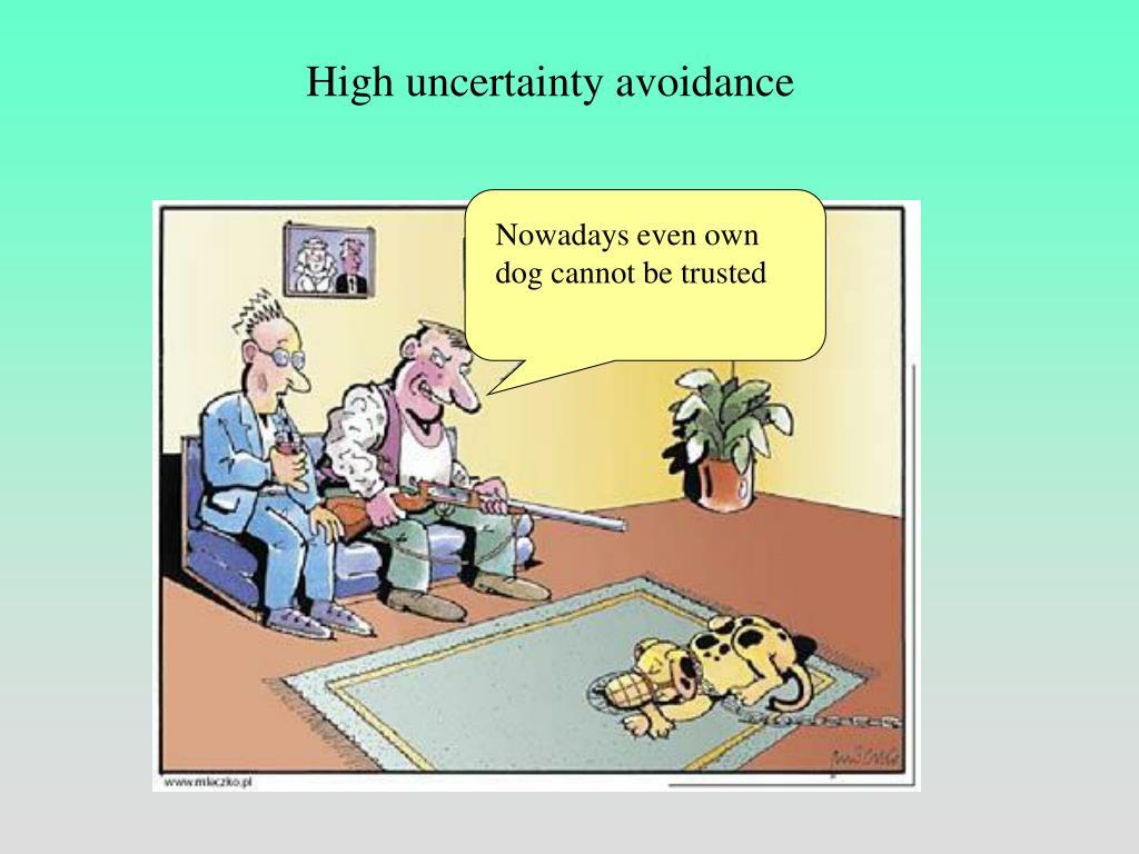 High uncertainty avoidance