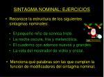 sintagma nominal ejercicios13