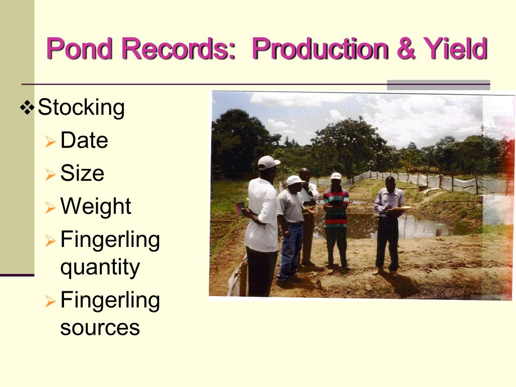 Pond Records:  Production
