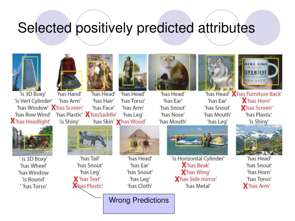 Selected positively predicted attributes
