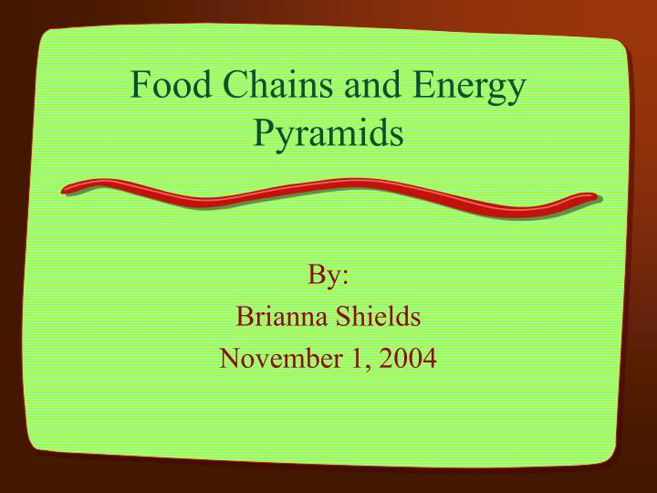 food chains and energy pyramids n.