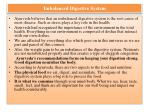 imbalanced digestive system