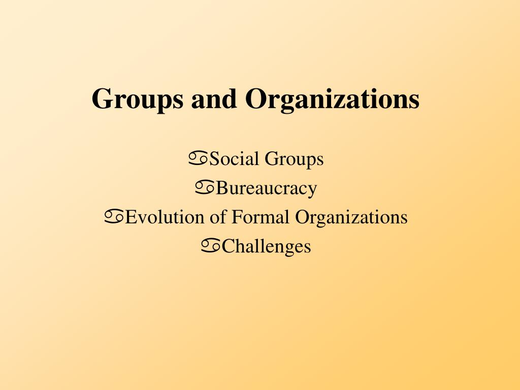 groups and organizations l.