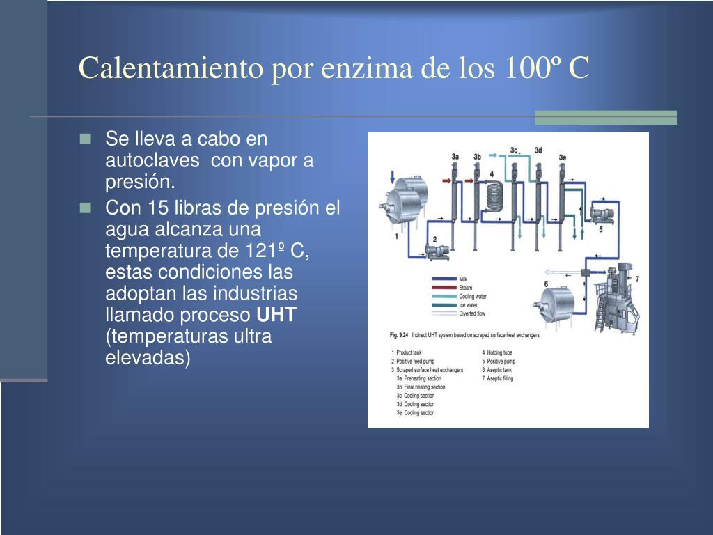 Calentamiento por enzima de los 100º C