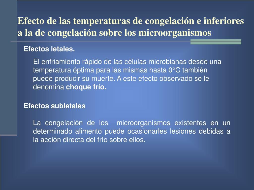Efecto de las temperaturas de congelación e inferiores a la de congelación sobre los microorganismos