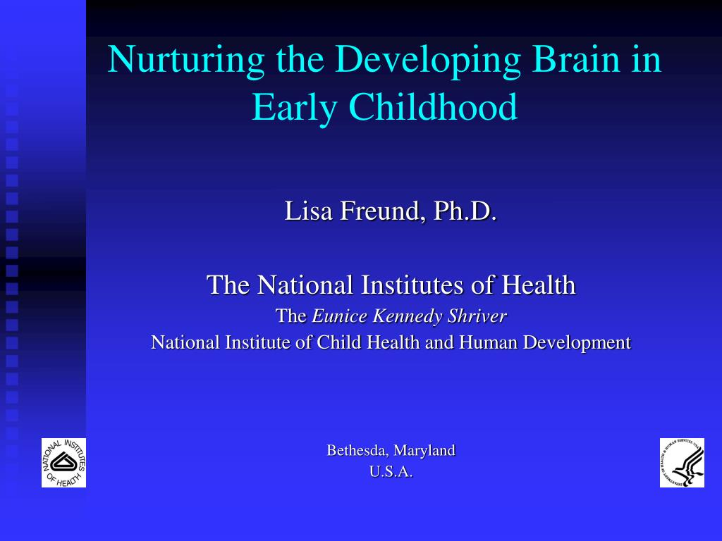 nurturing the developing brain in early childhood l.