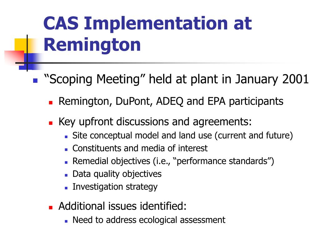 CAS Implementation at Remington