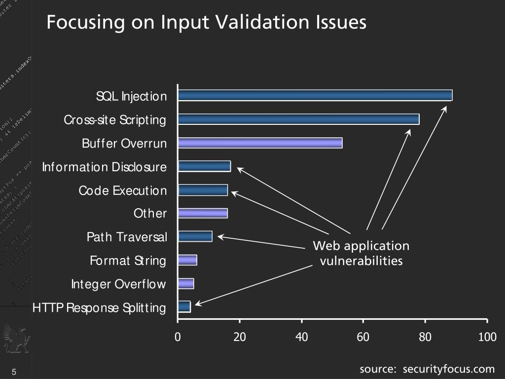 Focusing on Input Validation Issues