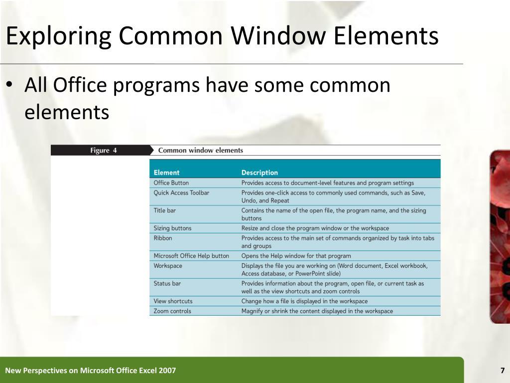 Exploring Common Window Elements