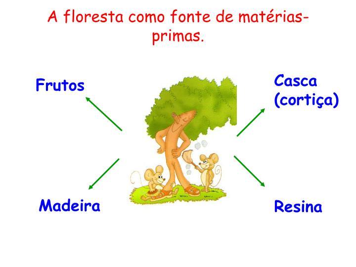 A floresta como fonte de mat rias primas