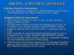 the npt a security assurance