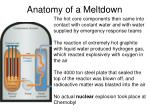 anatomy of a meltdown15