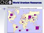 world uranium resources