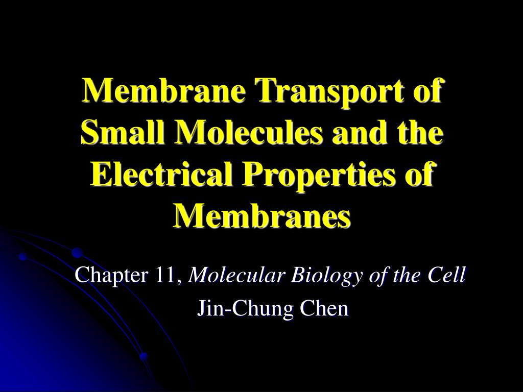 membrane transport of small molecules and the electrical properties of membranes l.