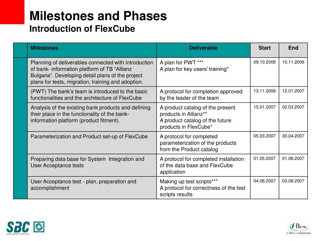 PPT - FLEXCUBE Implementation Case Study PowerPoint