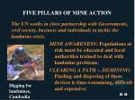 five pillars of mine action