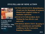 five pillars of mine action25