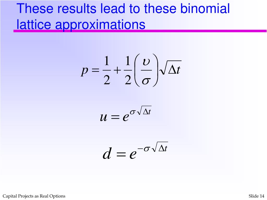 These results lead to these binomial lattice approximations