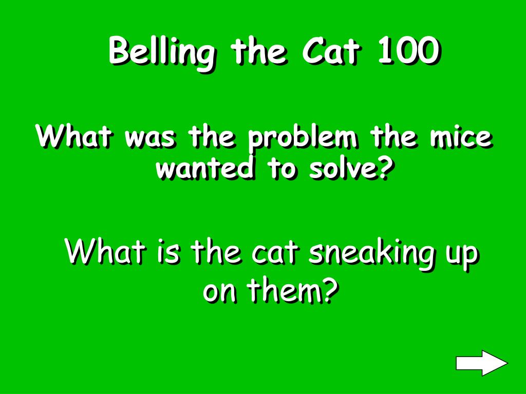 Belling the Cat 100