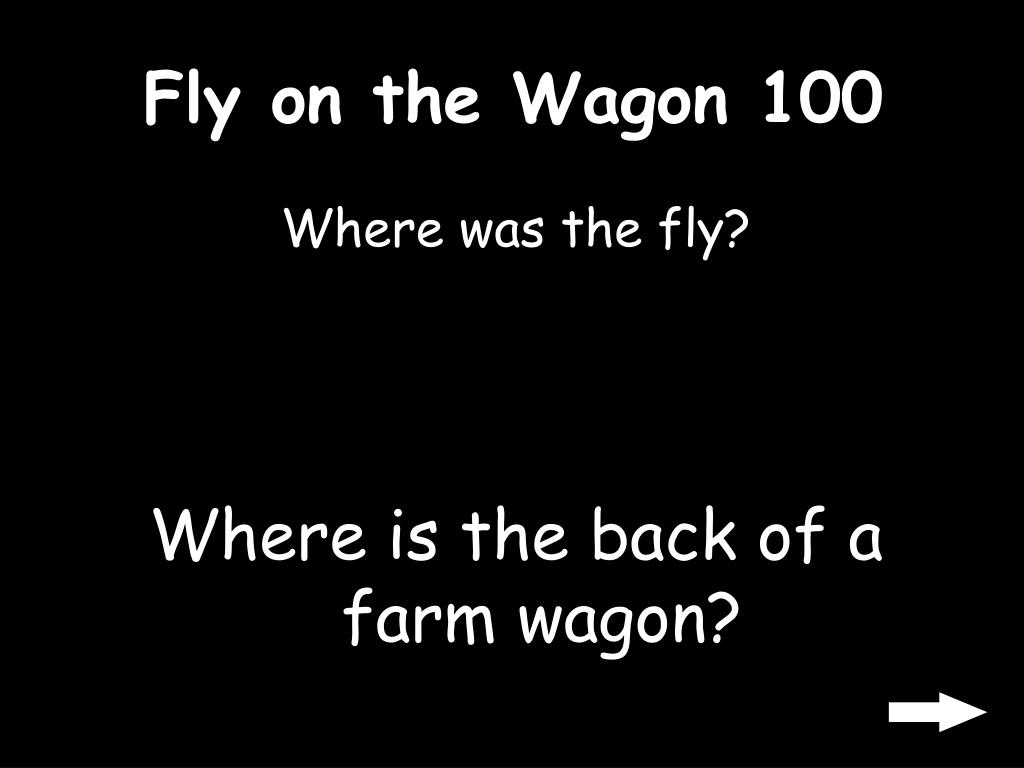 Fly on the Wagon 100
