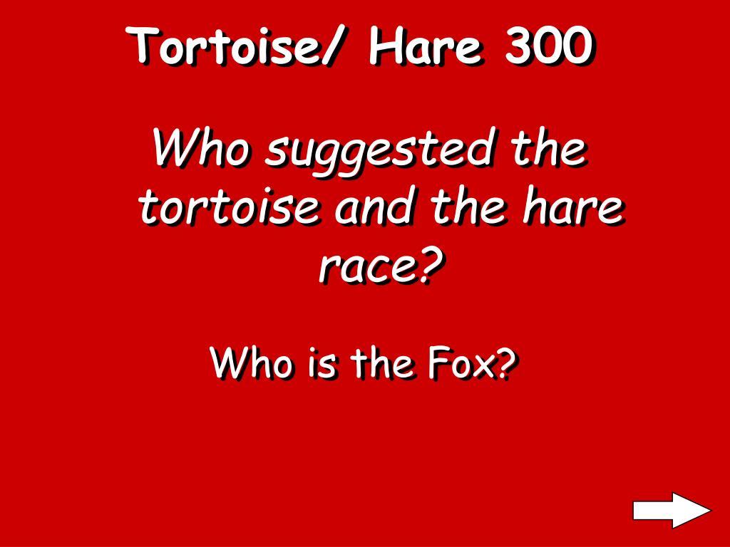 Tortoise/ Hare 300