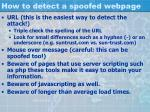 how to detect a spoofed webpage