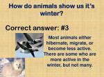 how do animals show us it s winter19