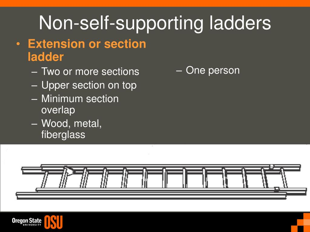 Extension or section ladder