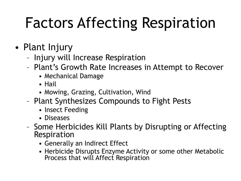Factors Affecting Respiration