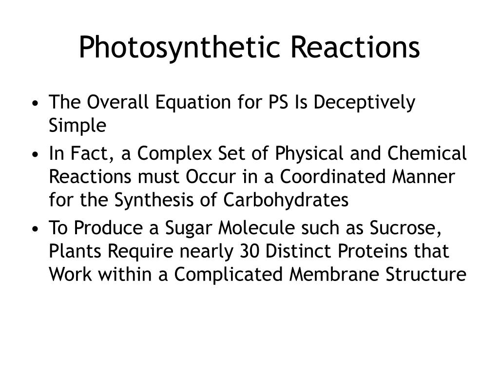 Photosynthetic Reactions