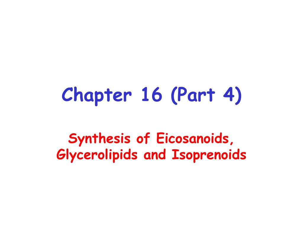 chapter 16 part 4 l.