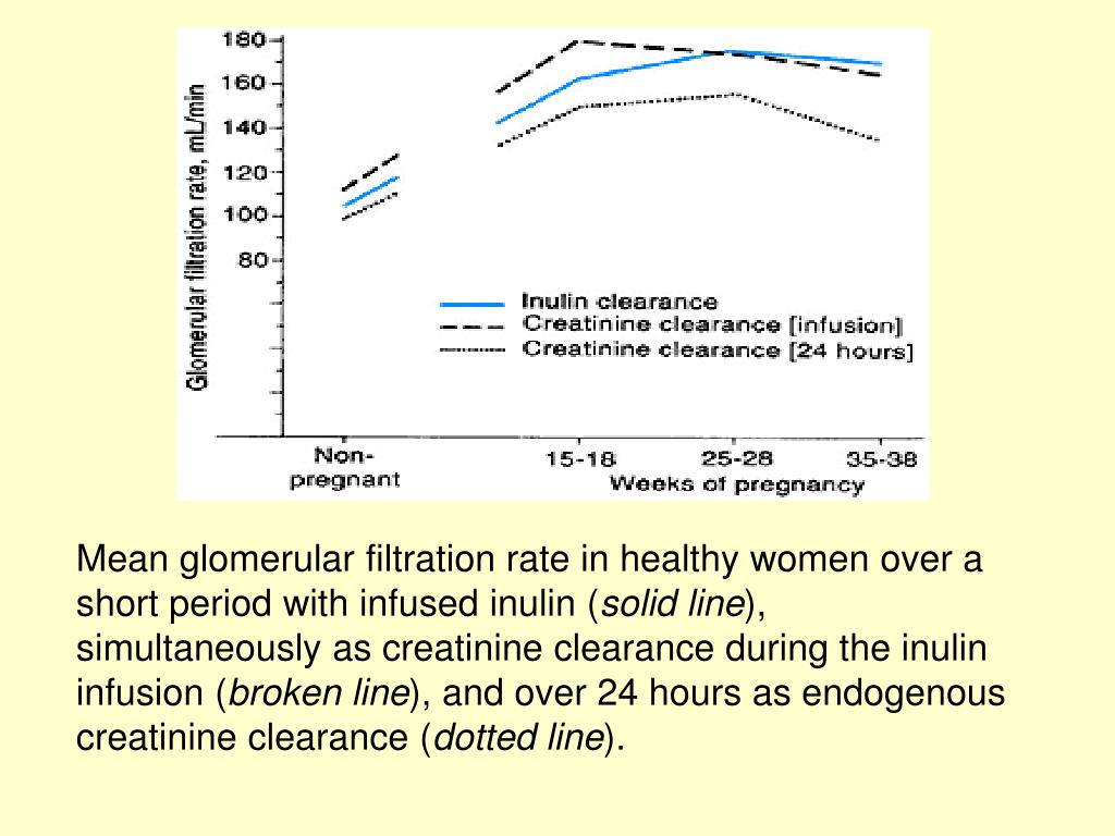Mean glomerular filtration rate in healthy women over a short period with infused inulin (