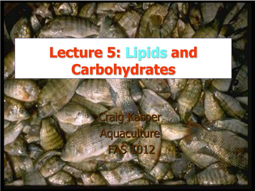 lecture 5 lipids and carbohydrates l.