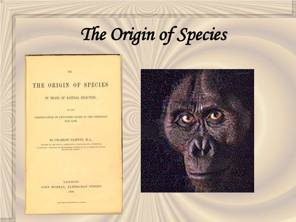 the origin of species Harvard classics, vol 11 : the origin of species : charles robert darwin : over fifteen years in the writing, this scientific treatise not only revolutionized every branch of the natural sciences with its theory of evolution, but influenced every literary, philosophical and religious thinker who followed.