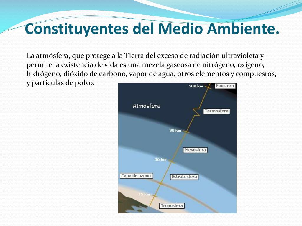 Constituyentes del Medio Ambiente.