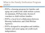 what is the family unification program fup