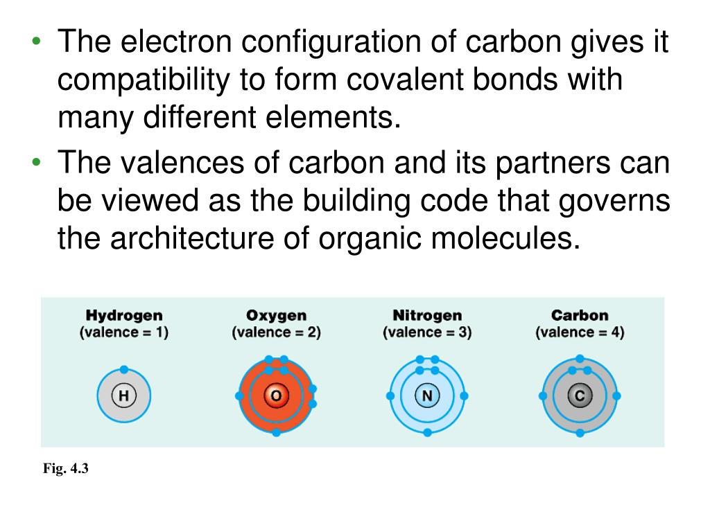 The electron configuration of carbon gives it compatibility to form covalent bonds with many different elements.
