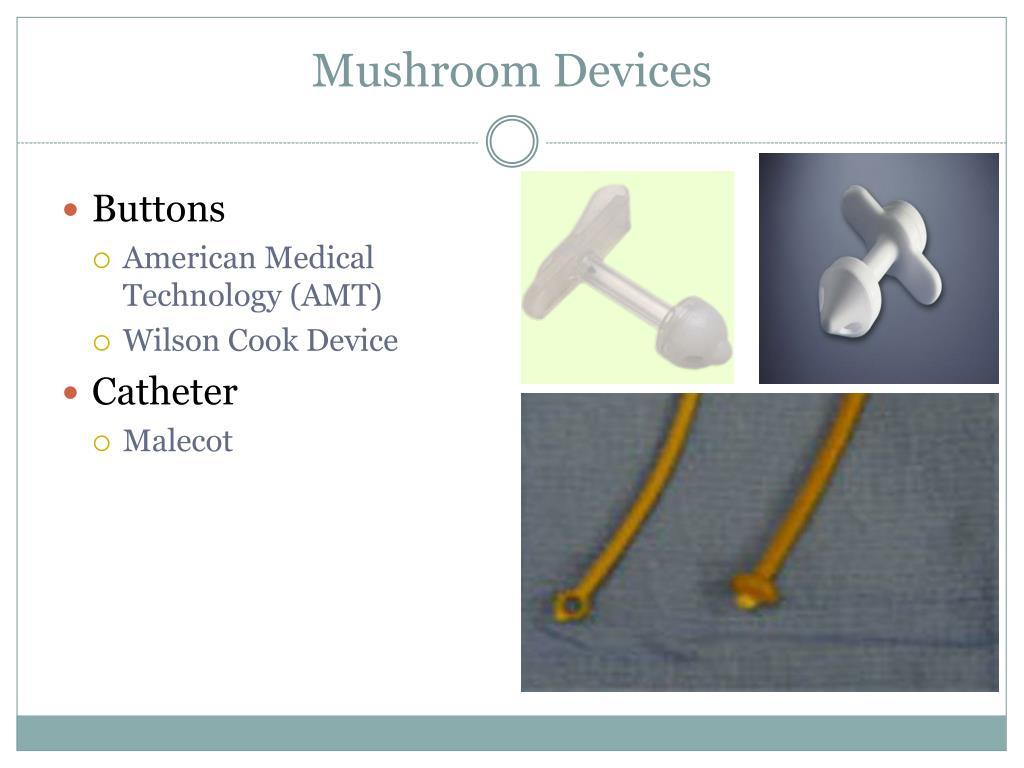 Mushroom Devices