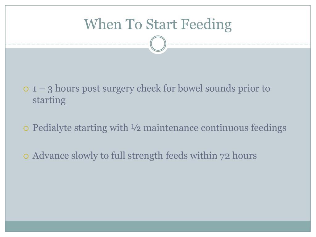 When To Start Feeding