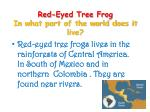 red eyed tree frog in what part of the world does it live