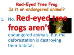 red eyed tree frog is it an endangered animal